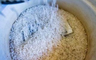 Как высушить айфон и сделать это правильно